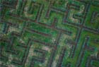 安龙国家科技农业园