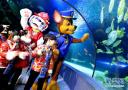 小朋友体验海底世界