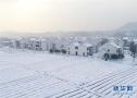 美丽乡村 雪景如画