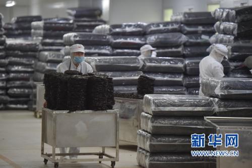 棉花是肉松做的?v棉花十大公司流言:你信了几江西江科学食品井图片