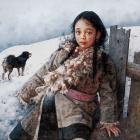 艾轩油画作品欣赏