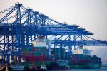 谭成旭向十三届全国人大一次会议提交建议 支持大连建设全国首批自由贸易港
