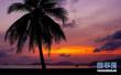 59国人员到海南入境旅游免签:外国人如何免签入境?
