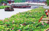 许昌市护城河上