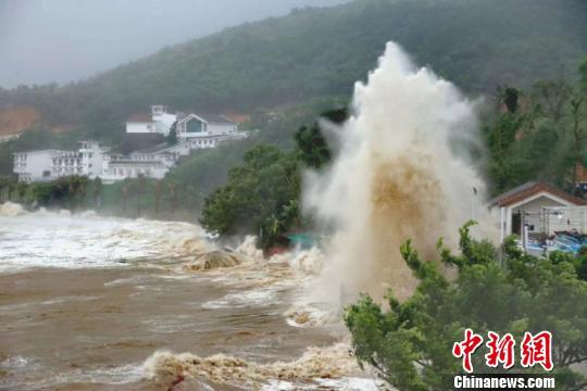 """应对台风""""玛莉亚"""":浙江转移39万余人2万余艘渔船"""