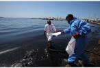 一天内两艘油轮遭袭 沙特宣布暂停红海石油运输