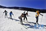 河北体育学院开展冰雪运动体验式培训