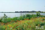 河北衡水:多姿多彩衡水湖