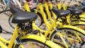 IT热点:共享单车充值能交不能退 网购如何判定真假