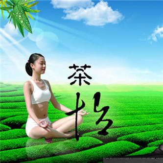 山东省茶文化协会