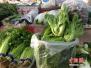 冬季临近蔬菜均价走势平稳 大蒜续涨直逼猪肉
