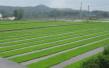 南通列入全省整体推进高标准农田建设试点市
