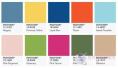 秋水伊人:除了草木綠、淡山茱萸粉,還有什么色彩為你美麗?