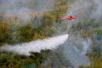 沈阳有望实现飞机远程灭火 已提报引进航空护林飞机