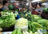 """山东大量蔬菜提前收获入市 菜价连续4周""""双下跌"""""""