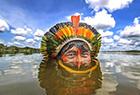 巴西原始部落人生活