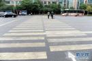 """沈阳司机6种情形需""""礼让"""" 行人停止不前不计违法"""