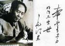 毛泽东、周恩来等书法赏析