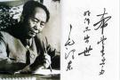 毛泽东周恩来等书法欣赏
