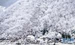这些雪景艳压群芳