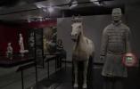 兵马俑在美展出时手指受损陕西省文物局表示将追究美方相关部门责任