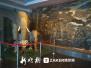中国(哈尔滨)森林博物馆15日开馆 4400件展品免费看