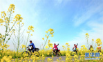 春暖花开来场郊游吧