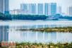 水润洛阳城 洛阳市水生态文明城市建设试点综述