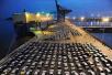 外媒赞中国降低汽车进口关税:中国市场将更加蓬勃发展