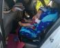 粗心父母将九个月大女婴锁车内 民警开锁救娃