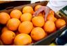 橙汁的这几个真相:榨橙汁流失维C