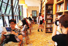 书店铺满金黄银杏叶