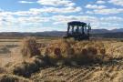 2018,又是粮食丰收年!全国粮食总产量65789万吨