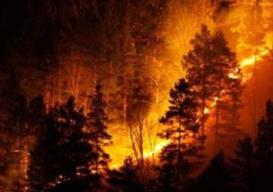 凉山木里县再次发生森林火灾 48名消防员徒步开进火场