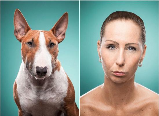 表情 主人/核心提示:英国曼彻斯特的一名宠物主人给她的小狗打起了特制...
