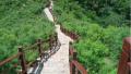 北京最美乡村之一房山水峪村春景迷人