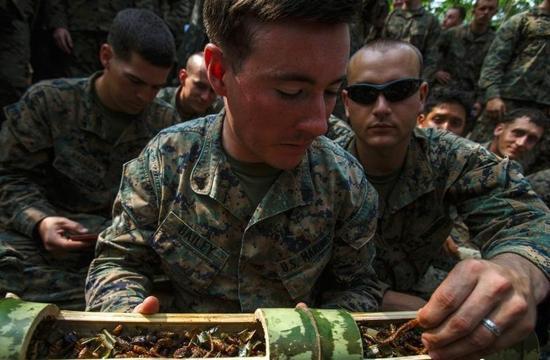 """最大规模的多国联合军事演习之一""""金色眼镜蛇2016""""将"""