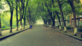 上海9所高校公布综合评价录取改革试点方案