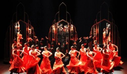河南省舞蹈家协会