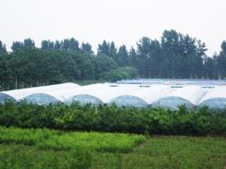 河南省农业高新科技园