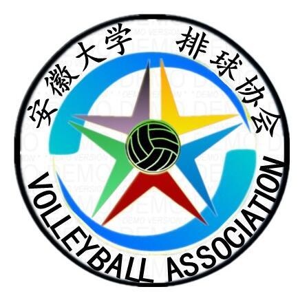 安徽大学排球协会