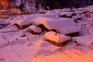 旅游风向标 黑龙江国有林区来蓉推介冰雪游