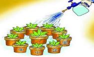 沈阳浑南区设立风险资金池支持中小企业发展