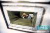 天网恢恢疏而不漏!男子越狱逃亡30年被抓