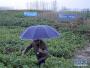 安徽阜南:一场检察机关提起的行政公益诉讼