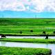生态环保出台国家规划
