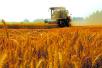 拓宽增加农民财产性收入的渠道