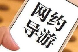 杭州悄现网约导游:私人订制路线不用做攻略、不用被购物