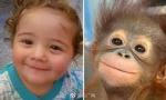 宝宝和小动物撞脸啦