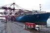 双节青岛邮轮母港客运量超2万人次 创下新纪录